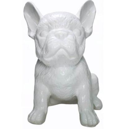 Bulldog Francês Bianca